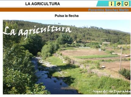 http://cplosangeles.juntaextremadura.net/web/edilim/curso_3/cmedio/los_trabajos_3/agricultura/agricultura.html
