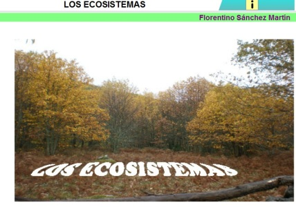 ecosistemas florentino