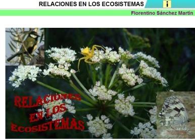 ecosistemas relaciones