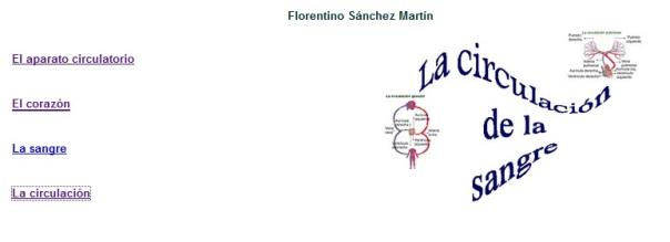 circulacion florentino