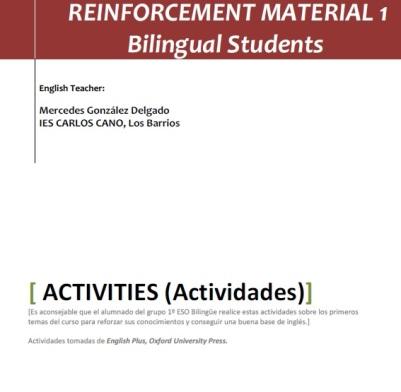 reinforcement 1